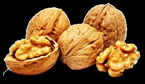 walnuts-_2a