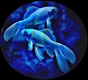 Pieces blue ca